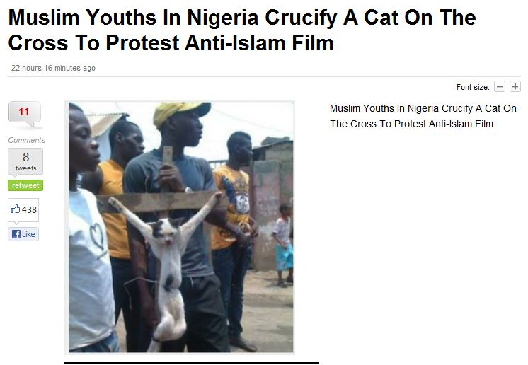 muslims-crucify-cat-to-protest-anti-islam-film-17.9.2012 (1)